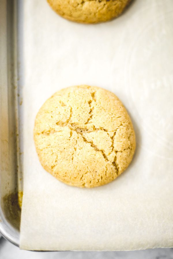 Close up of a freshly baked snickerdoodle cookie.